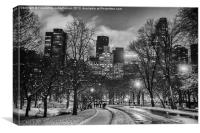 nyc city line from central park, Canvas Print
