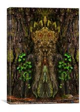 Guardian of the Wild Woods, Canvas Print