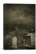 The Fortingall Yew, Perthshire, Scotland, Canvas Print