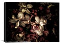 dark flowers, Canvas Print