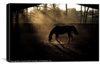 the dust is settling, Canvas Print