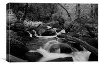 Becky Falls Black and White, Canvas Print
