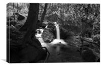 Becky Falls Pool Black and White, Canvas Print