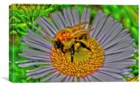 Bee on flower, Canvas Print