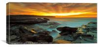 Just Glorious, Canvas Print