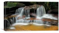 Falls of the Wilderness, Canvas Print