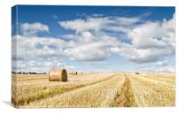 St Andrews Bales, Canvas Print