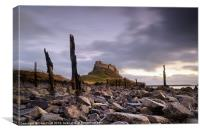 Lindisfarne Castle Sunrise, Canvas Print