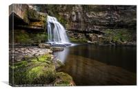 Cauldron Falls, West Burton, Canvas Print