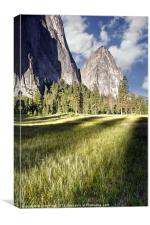 Cathedral Rocks in Yosemite Valley, Canvas Print