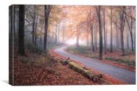 The Lost Road, Canvas Print
