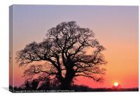 Little and Large, Canvas Print