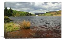 Upper Derwent Reservoir, Canvas Print