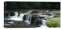 At Aysgarth Falls, Canvas Print