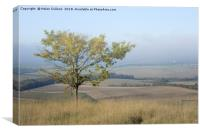 Mist over the Vale of Aylesbury                   , Canvas Print