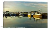 Fraserburgh Yellow and Blue Boats, Canvas Print