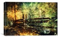 Forest with Old Fence, Canvas Print