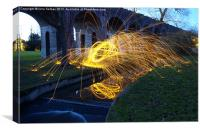 Sparks in the park, Canvas Print
