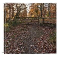Over the Stile, Canvas Print