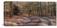 Bromley Hill Panorama, Canvas Print