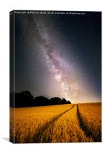 Milkyway, Canvas Print