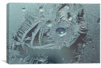 Frost on a winter window, Canvas Print