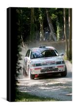 Nissan Rally Car, Canvas Print