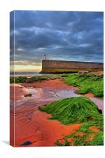 Red Sands, Canvas Print