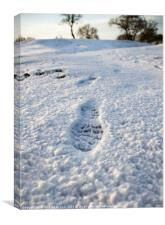 Footstep in the Snow, Canvas Print