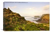 Towards Whipsiderry., Canvas Print
