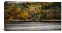Autumn at Derwent, Canvas Print