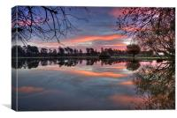 Janesmoor Pond New Forset National Park, Canvas Print