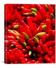 Red Hot Chilli Peppers, Canvas Print