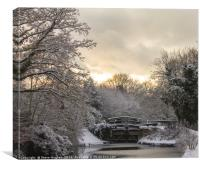 Winter on the Basingstoke Canal, Canvas Print