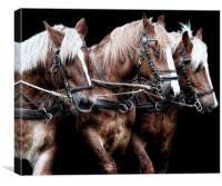 Three is a magic number, Canvas Print