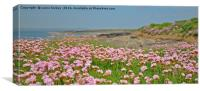 Seapinks wexford ireland, Canvas Print