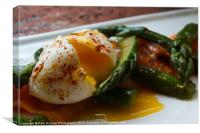 Poached egg on Asparagus & Salmon, Canvas Print