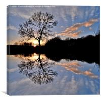 Cosmeston Lakes Country Park, Canvas Print