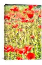 Monet Poppy Meadow, Canvas Print
