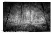 The Haunted Forest , Canvas Print