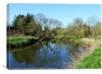 Bend in the River Lagan, Canvas Print