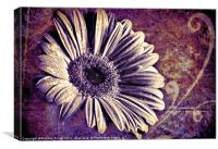 Drained of Colour..., Canvas Print