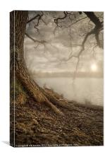 MOTE PARK SUNSET, Canvas Print