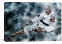 THE SPIRIT OF KARATE, Canvas Print