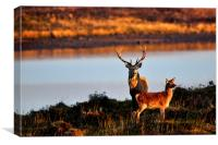 By the Lochside, Canvas Print