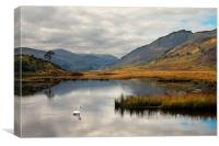 Glen Strathfarrar, Canvas Print