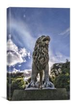 Just Lion in the Sun, Canvas Print