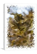Leaf it out, Canvas Print