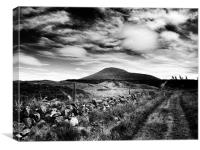 East Lomond Hill, Canvas Print