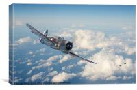 Curtiss - French Air Force, Canvas Print